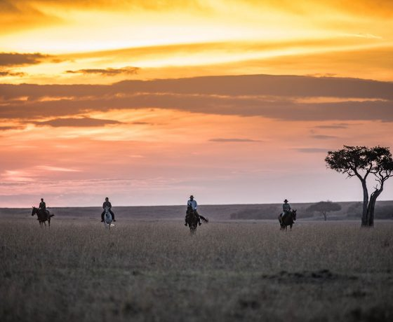Private Riding Safaris