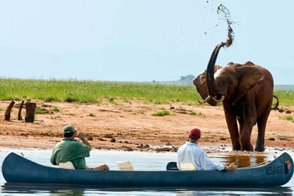 Musango canoe trip