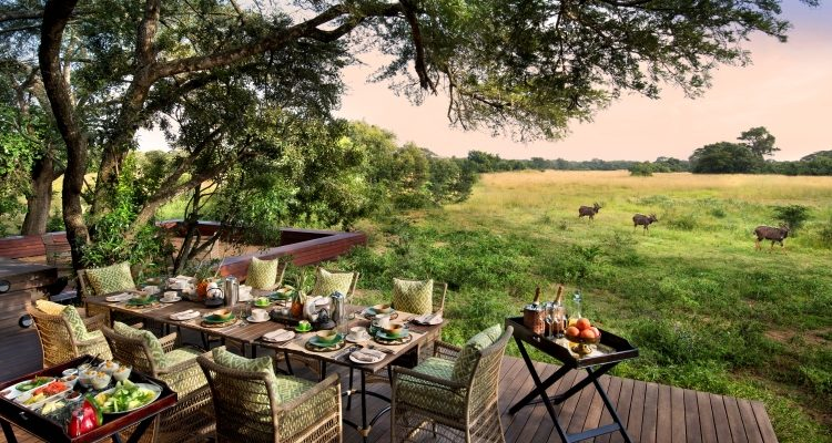 Dream Safari to Plan – Spectacular South Africa