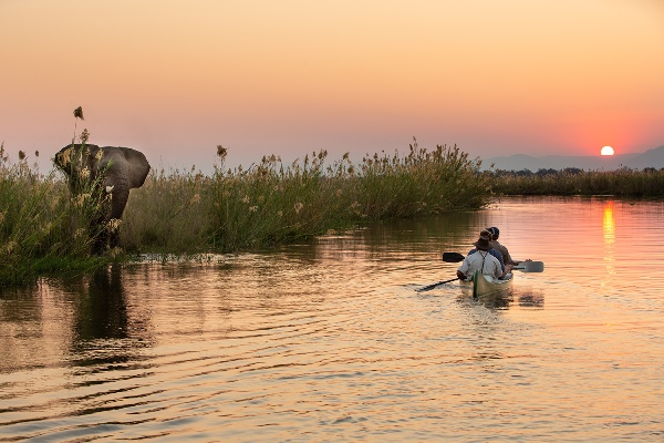New safari camps